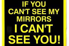 See Mirrors Sticker